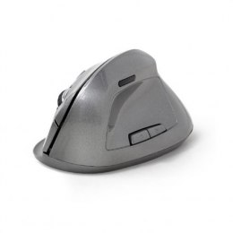 Gembird MUSW-ERGO-02 2.4GHz Wireless Optical Mouse, USB, Wireless connection, Spacegrey