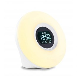 ADE Alarm Clock with Radio Wake-up Light CK 1718 Led Light